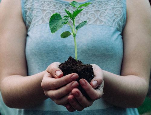 The Secret to Spiritual Growth as a Disciple