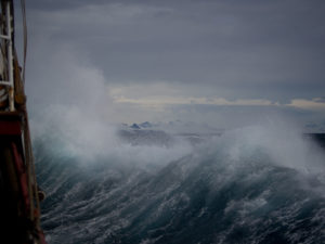 Discipleship that Stands Through the Storm